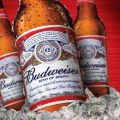 american beer, bluemoon, beer, beerfood, chicken and beer, chilled beer
